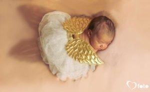 Heartfoto Newborn and Child Photography Portfolio